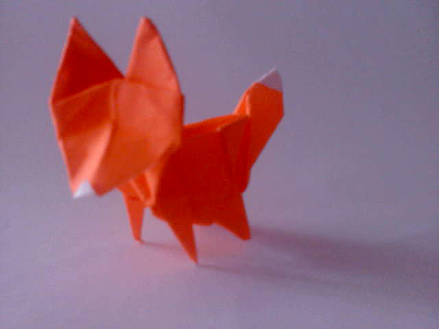 fox origami courtesy hadi g1f99059
